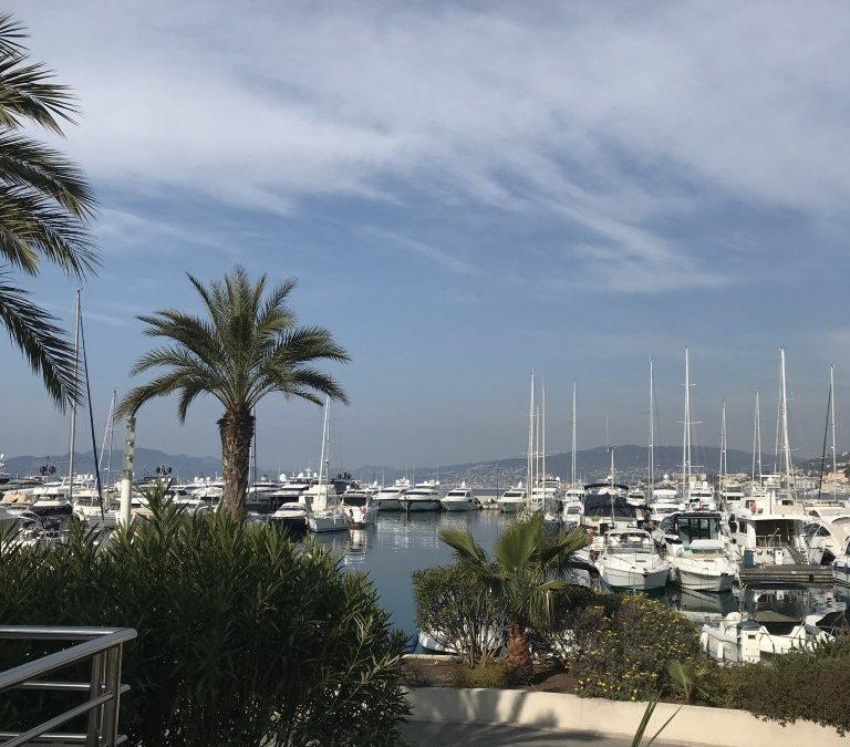 Cannes Wine Fair!