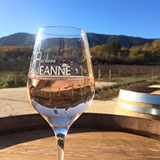 Domaine des Jeanne Taste See - Our Vineyard