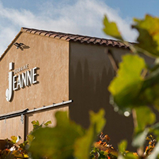Domaine des Jeanne Timeline - Our Vineyard